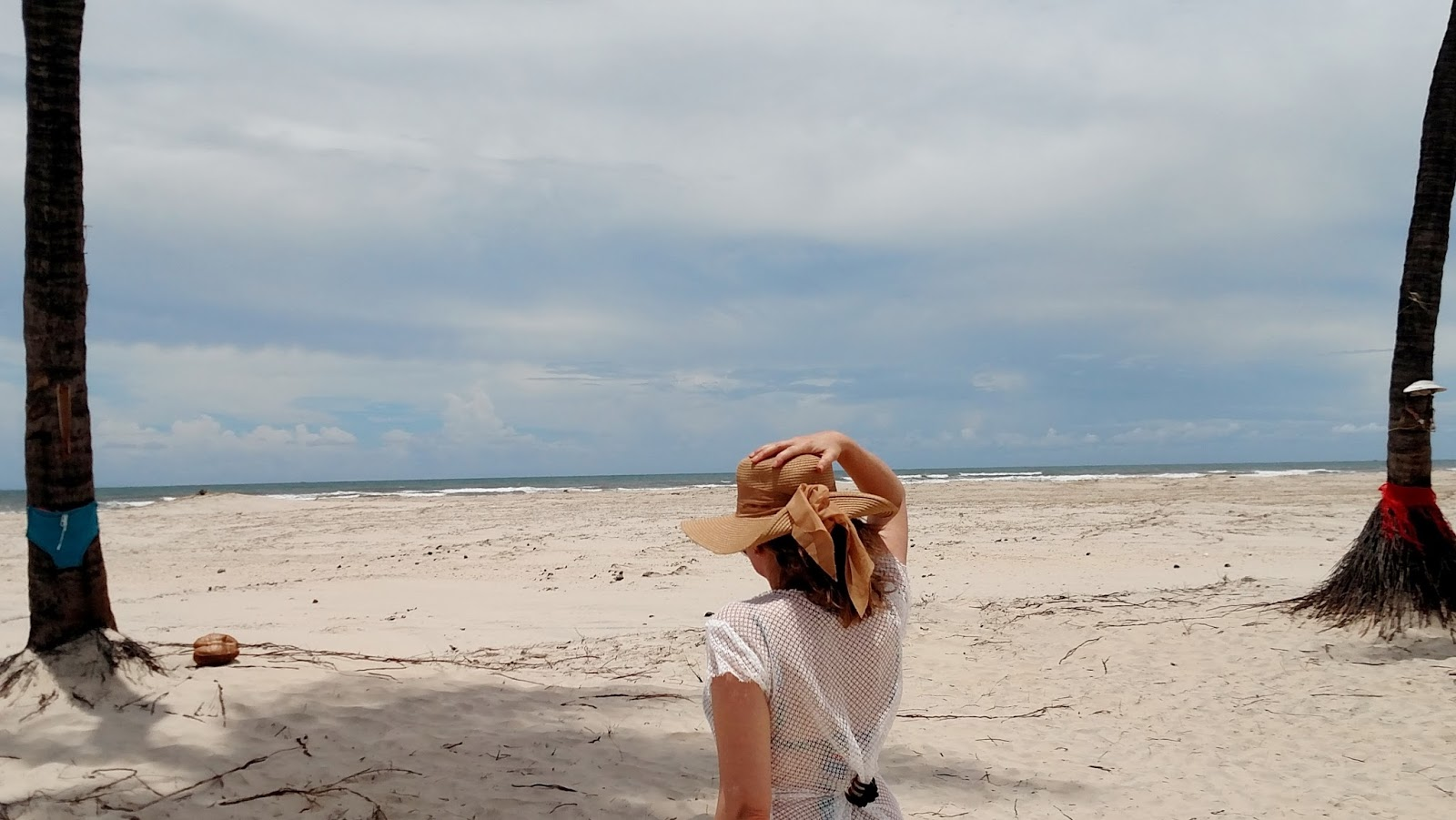 Coqueiros na Praia de Romeu e Julieta - Mangue Seco Bahia