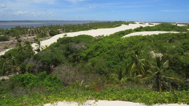 Dunas e vegetação em Mangue Seco Bahia