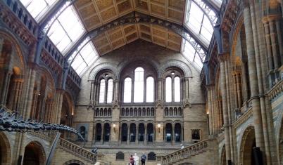 museu-historia-natural-lonrdres