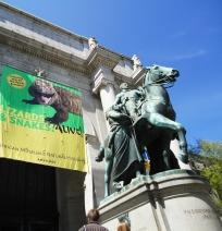 museu-historia-natural-NYC