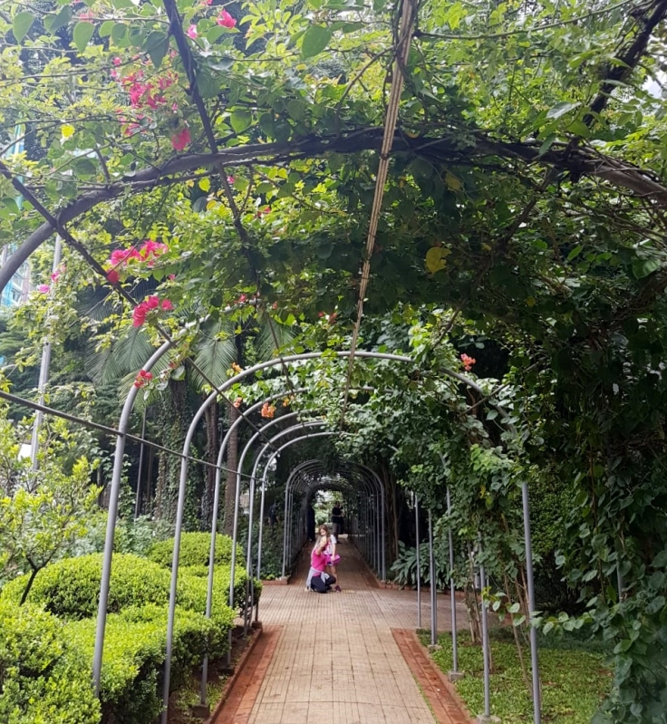 Casa das Rosas - jardim 1