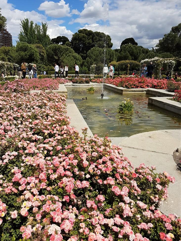 parque-del-retiro-rosaleda-jardim