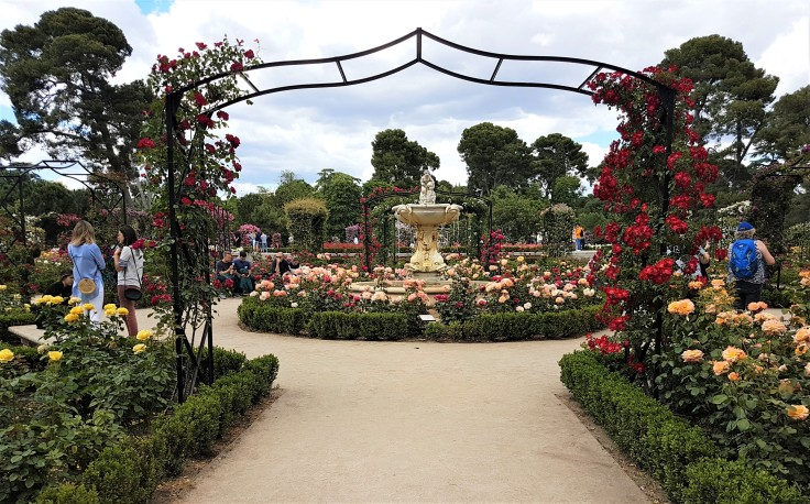 parque-del-retiro-rosaleda