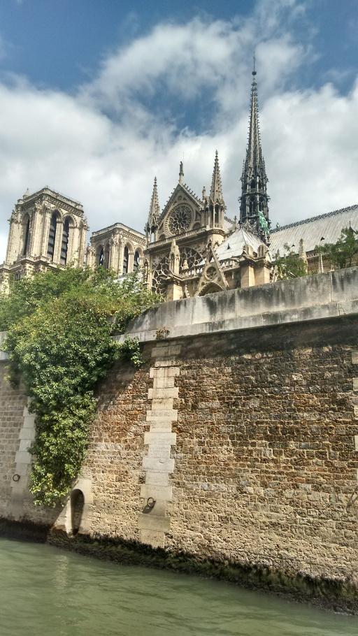 Vista da Notre Dame no passeio de barco pelo Sena