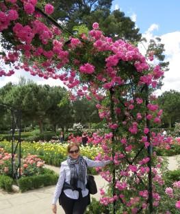 parque-del-retiro-rosaleda-gradil