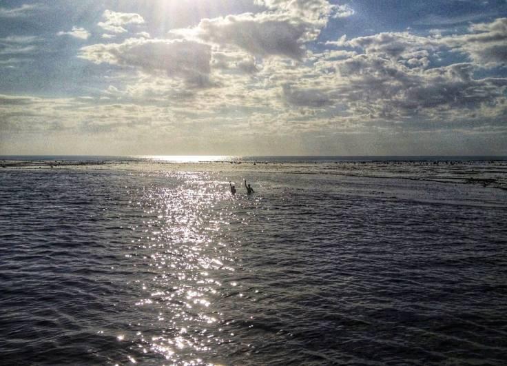 prado-bahia-recifes-das-guaratibas