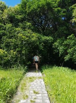 trilha-morro-fortaleza
